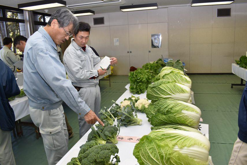 長岡京市農林産物品評会1
