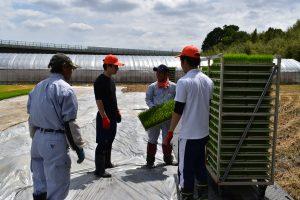 農業理解へ 新採用職員研修1