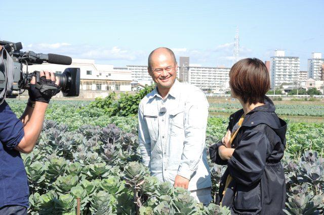 「おどり葉ぼたん」のTV取材を受けました
