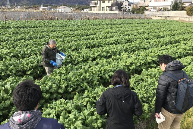 地域特産物「花菜」の魅力を発信