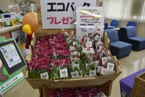 みのり姫のふれあいマルシェを開催3