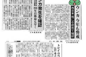 営農技術情報「奈良県におけるトビイロウンカ発生情報」3